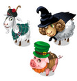 scottish wizard leprechaun costume on animals vector image vector image