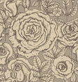 seamless pattern with graphic roses vector image vector image