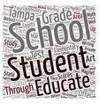 Tampa Schools text background wordcloud concept vector image vector image