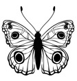 vector illustration of detailed butterfly silhouet vector image vector image