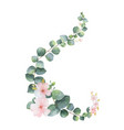 watercolor wreath with green eucalyptus vector image vector image