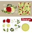 Hand Drawn floral elements Set of flowers You can vector image