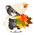 animated cute grey kitten in a warm knitted hat vector image vector image