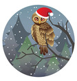 Cute Christmas Owl2 vector image vector image