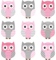 Pink and Grey Cute Owl Collections vector image vector image