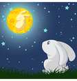 Rabbit and the moon vector image vector image