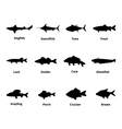 Silhouette of fish with an inscription vector image vector image