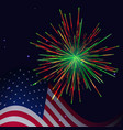 united states flag and red green fireworks vector image