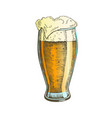 color hand drawn glass with foam bubble beer vector image vector image