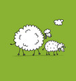 funny sheeps sketch for your design vector image vector image