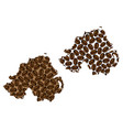 northern ireland - map of coffee bean vector image