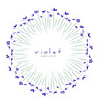 round frame of wild violets isolated on white vector image vector image