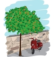 Scooter near an orange tree vector image vector image