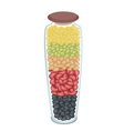 Set of Different Beans in A Bottle vector image