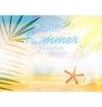 Summer calligraphic designs vector image