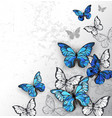 blue and white butterflies vector image vector image