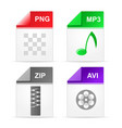 filetype format icons - zip png mp3 avi vector image