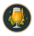 glass beer with ears corn and hop branch vector image vector image