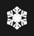 paint brush snowflake vector image vector image
