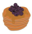 pancakes with syrup and blueberries vector image vector image