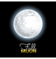 Realistic Volume 3d Full Moon on Black Dark vector image