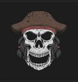 skull hat pirate vector image