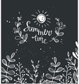 Summer background with herbs and sun on the vector image vector image