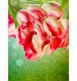 Vintage floral frame background EPS 10 vector image vector image