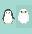 white snowy owl penguin bird icon set sitting vector image