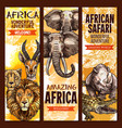 african safari outdoor adventure sketch banner set vector image vector image