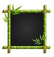 Bamboo frame with leafs isolated on white vector image vector image