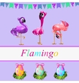 Fancy flamingos and colorful gift eggs vector image vector image