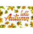 Hello autumn Hand drawn different colored autumn vector image vector image