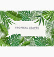 horizontal background with green tropical leaves vector image