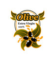 olives extra virgin isolated olive oil icon vector image
