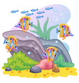 sea world wildlife background with tropical fish vector image