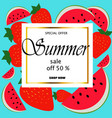 summer sale and cute watermelon slice vector image vector image