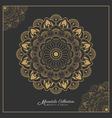 Henna Mandala tattoo design vector image