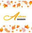 autumn season autumn leaves background imag vector image vector image