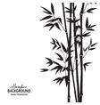 Bamboo bush vector image vector image