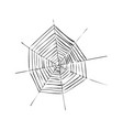 cobweb or spiderweb spider web for halloween vector image