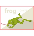 Frog isometric flat 3d vector image