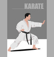karate silhouettes vector image vector image