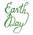 Lettering Earth day tinsels vector image vector image