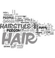 where is that hair way up there text word cloud vector image vector image