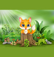 cartoon a fox sitting on tree stump with green pla vector image