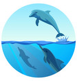 dolphin jumping out of water in deep blue sea vector image vector image