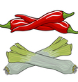 leek and red pepper vector image vector image