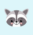 raccoon cute cartoon animal icon isolated on blue vector image