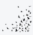 silhouette of a flock of birds black contours vector image vector image